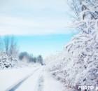 guida-sulla-neve
