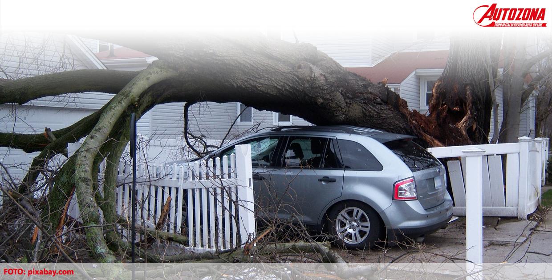 Assicurazione auto eventi atmosferici e naturali: cosa può coprire?